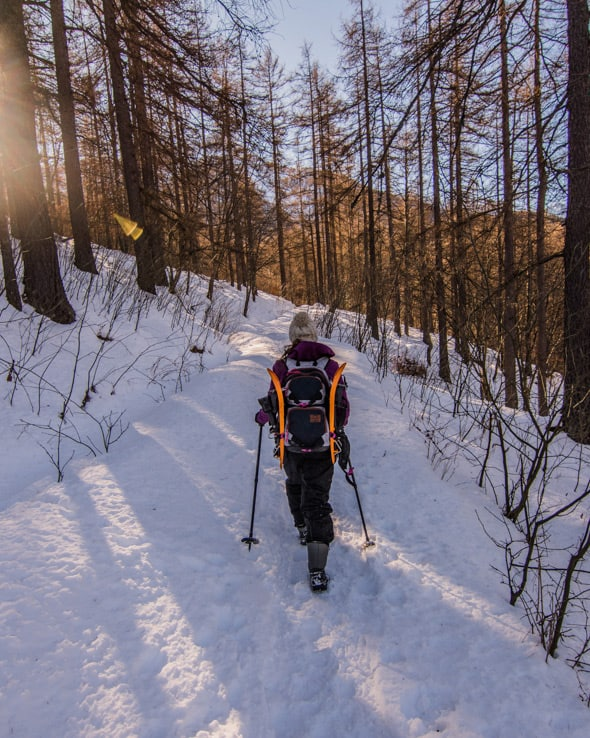 Escursioni-con-le-ciaspole-Val-di-Susa--6