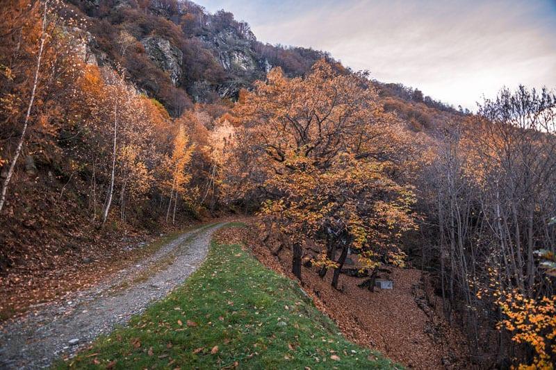 sentiero dei gufi2